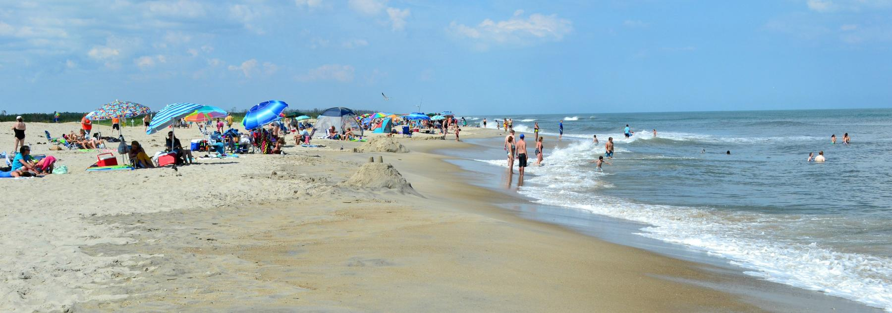 Assateague Island Beach